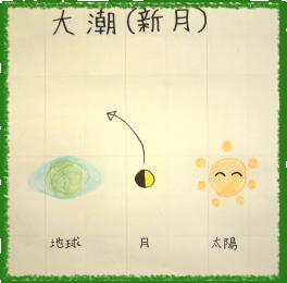 大潮(新月)