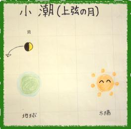 小潮(上弦の月)