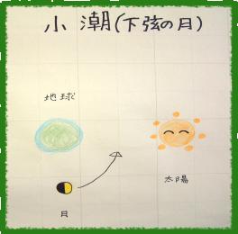 小潮(下弦の月)