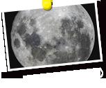 満月の研究
